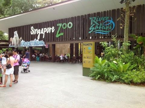 Cara ke River Safari, Singapore