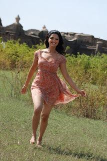 thadaiyara thaakka tamil movie stills 0305120344 037.jpg