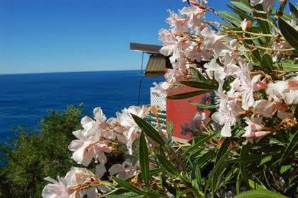La Francesca Resort di Bonassola (SP) a misura di famiglia