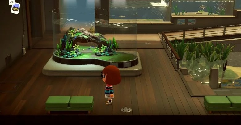 Everything you need to complete the Socrates museum in Animal Crossing: New Horizons
