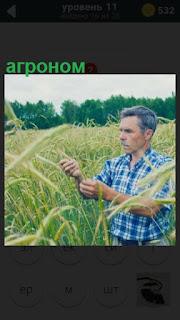 275 слов в поле находится агроном проверяющий урожай 11 уровень
