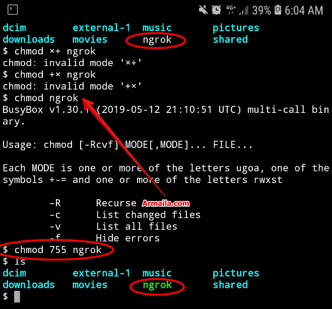 Chmod: No such File or Directory Saat Ngrok Termux - ARMAILA