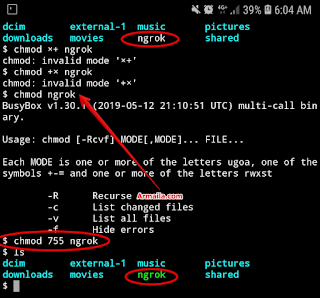 Chmod: No such File or Directory Saat Ngrok Termux