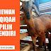 20+ Jasa Aqiqah Jakarta Timur Daerah Ciracas Cibubur Cipayung Cakung Klender Rawamangun Kalisari