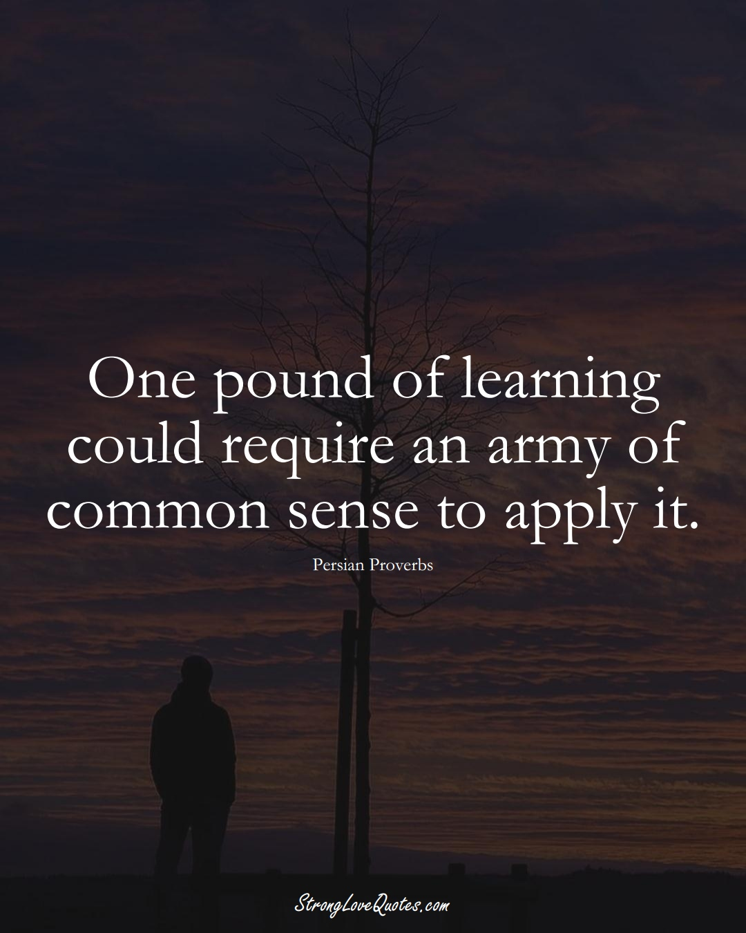 One pound of learning could require an army of common sense to apply it. (Persian Sayings);  #aVarietyofCulturesSayings