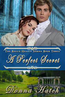 Heidi Reads... A Perfect Secret by Donna Hatch