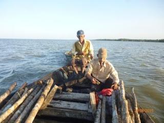 Kayu Mangrove dan Perahu Perambah