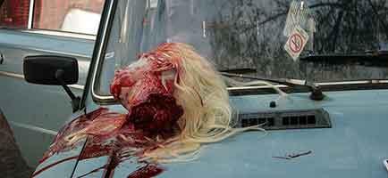 Winter of the Dead: Meteletsa, primer film sobre zombies rodado en Rusia.