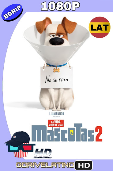 La Vida Secreta de Tus Mascotas 2 (2019) BDRip 1080p Latino-Ingles MKV