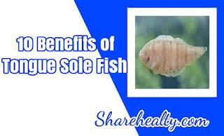 10 Benefits of Tongue Sole Fish