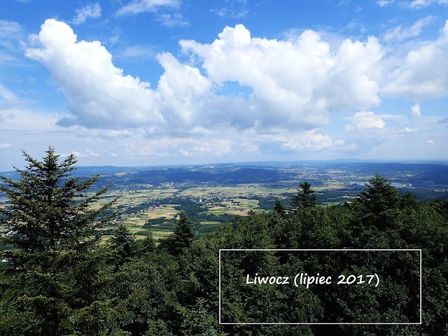 Liwocz, najwyższy szczyt Pogórza Ciężkowickiego (562 m n.p.m.)