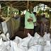 Penuhi Kebutuhan Petani Agam, Rumah Kompos S2 Taluak Mampu Produksi 28 Ton Pupuk