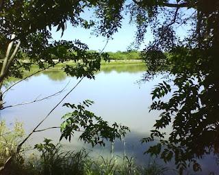 lago en santiago del estero