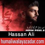 http://www.humaliwalayazadar.com/2015/10/hassan-ali-nohay-2016.html