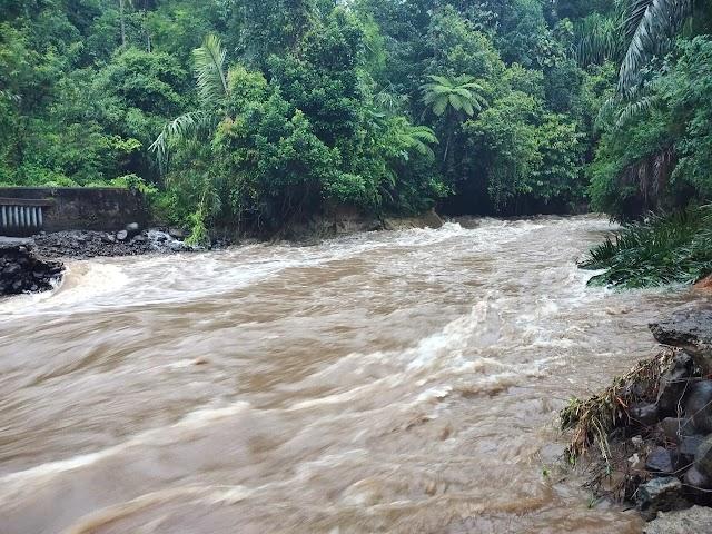 Bendungan Lubuak Kuning Jebol, 40 Hektar Sawah di Nagari Sikucur Barat Terancam Kekeringan