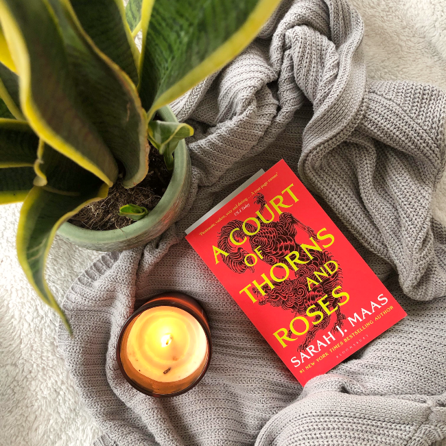 Cover for 'A Court of Thorn and Roses': bright red with bright yellow writing. Next to a lit white candle and blurry snake plant
