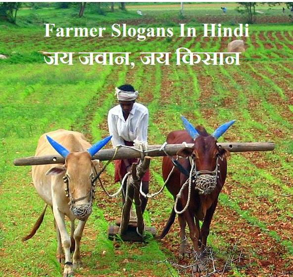 Farmer Slogans Hindi Jai Jawan Jai Kisan