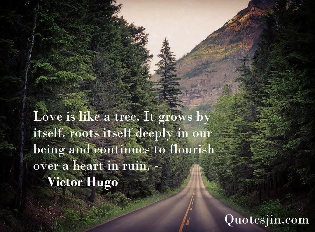 best nature quotes inspirational saying nature quotes quotesjin