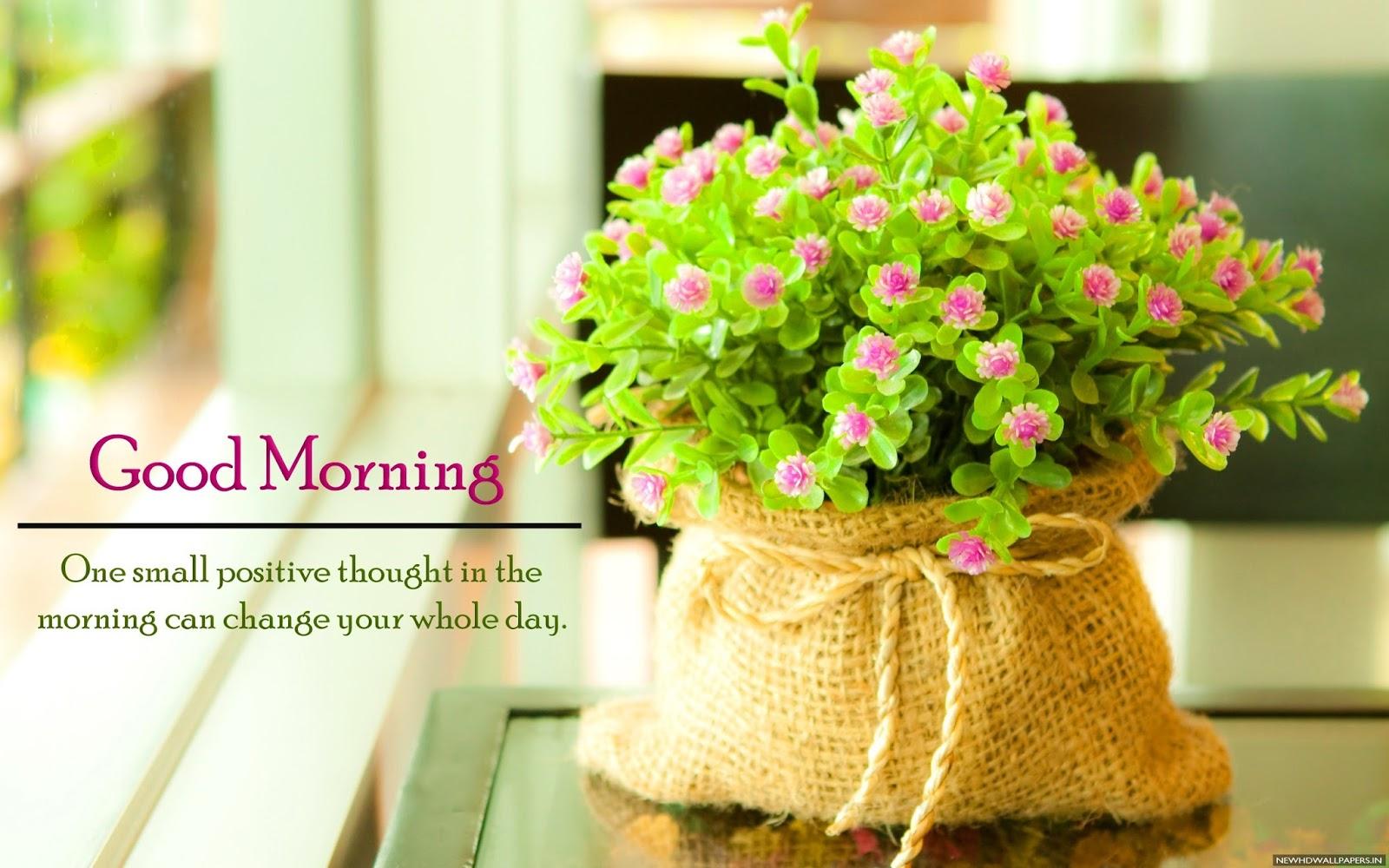 Wallpaper download morning - Good Morning Hd Images Good Morning Hd Wallpaper Good Morning Hd Photos Good