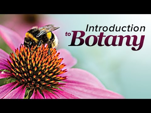 11th Bio Botany Unit 1 Important Question Study Material Prepared by Mr A Moses Packiaraj TM