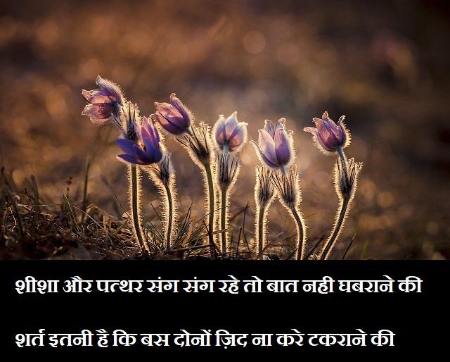 Shayari on Love in hindi,Shayari for Love in Hindi,Shayari in hindi Sad,Shayari sad in hindi 2020-2021