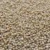 Mustard Seeds/Sarso/Rai Benefits for Health, Skin,Hair