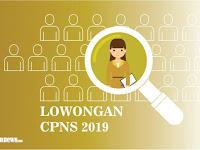 Simak !! Informasi Umum Pendaftaran Seleksi CPNS 2019