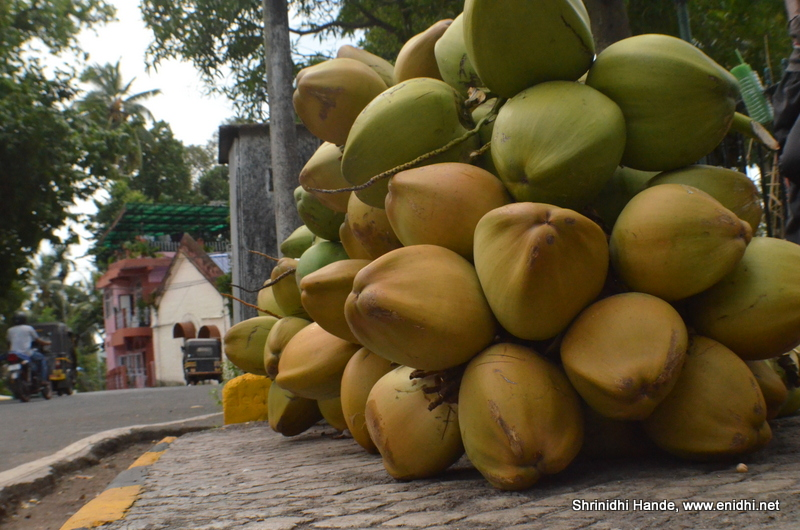 Tender Coconut around the world: My findings! - eNidhi India