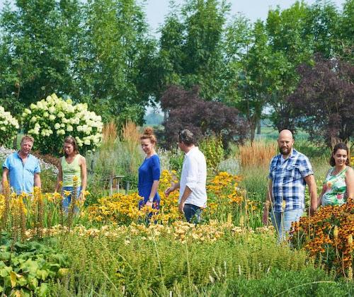 Jardín de muestra de plantas vivaces en Appeltern: diferentes borduras de herbáceas donde encontrar inspiración