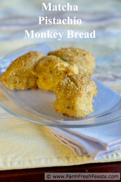 This overnight sweet brunch bread is a perfect way to start off a St Patrick's Day celebration. Delicately, naturally green from matcha powder, this monkey bread is rolled in pistachios for flavor and crunch.