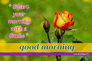 start your morning with smile! Good morning message with small rose flowers