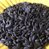Roasted Salted Sunflower Seeds are the perfect snack