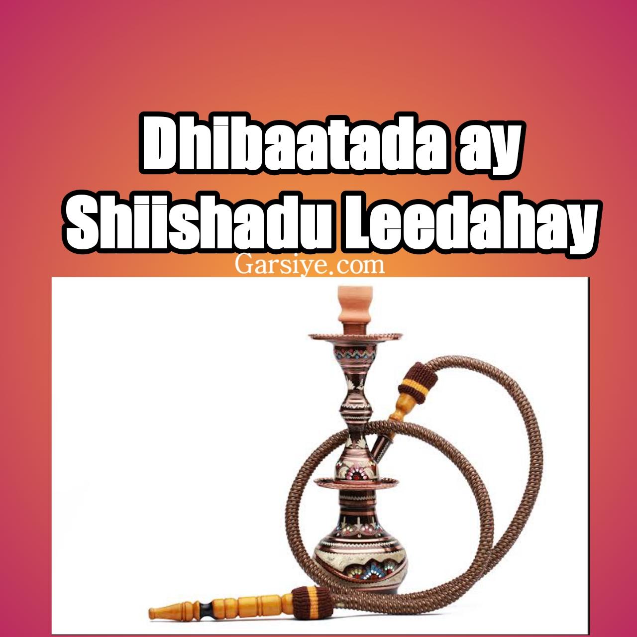 shiishada,shiishad,shisha smoking,halista shiishada hookah,muqdisho,dhaqan xumada rag iyo dumarka wada caba shiishada,somaliland,kenya oo laga mamnuucay shiishada iyo cudur halis ah,siigo,hargeysa,sigaarka,hees,heeso,niiko,somali,somalia,dirisle abdi,#dirisle abdi,musalsal,xidigaha,sh mustafe,siil.naag,qosol,simba,fiska,heeso cusub,siil iyo gus,sh.mustafe,tahriib,farhiya,farxiyo fiska,dirisle,kismayo,idirisle,igu qaado,kismaayo