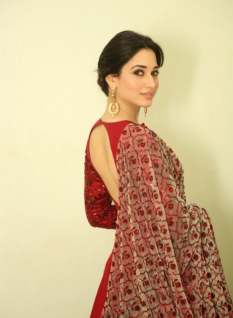 Tamannaah Bhatia Flashes Her Milky White Sexy Back in a Maroon Dress At Telugu Film 'Speedunnodu' Audio Release in Hyderabad