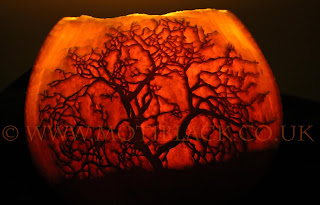A leafless winter tree carved onto a pumpkin