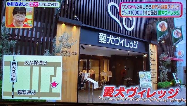 【TV紹介】日本テレビ「ヒルナンデス」に愛犬ヴィレ…