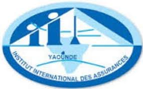 Institut International des Assurances (IIA)