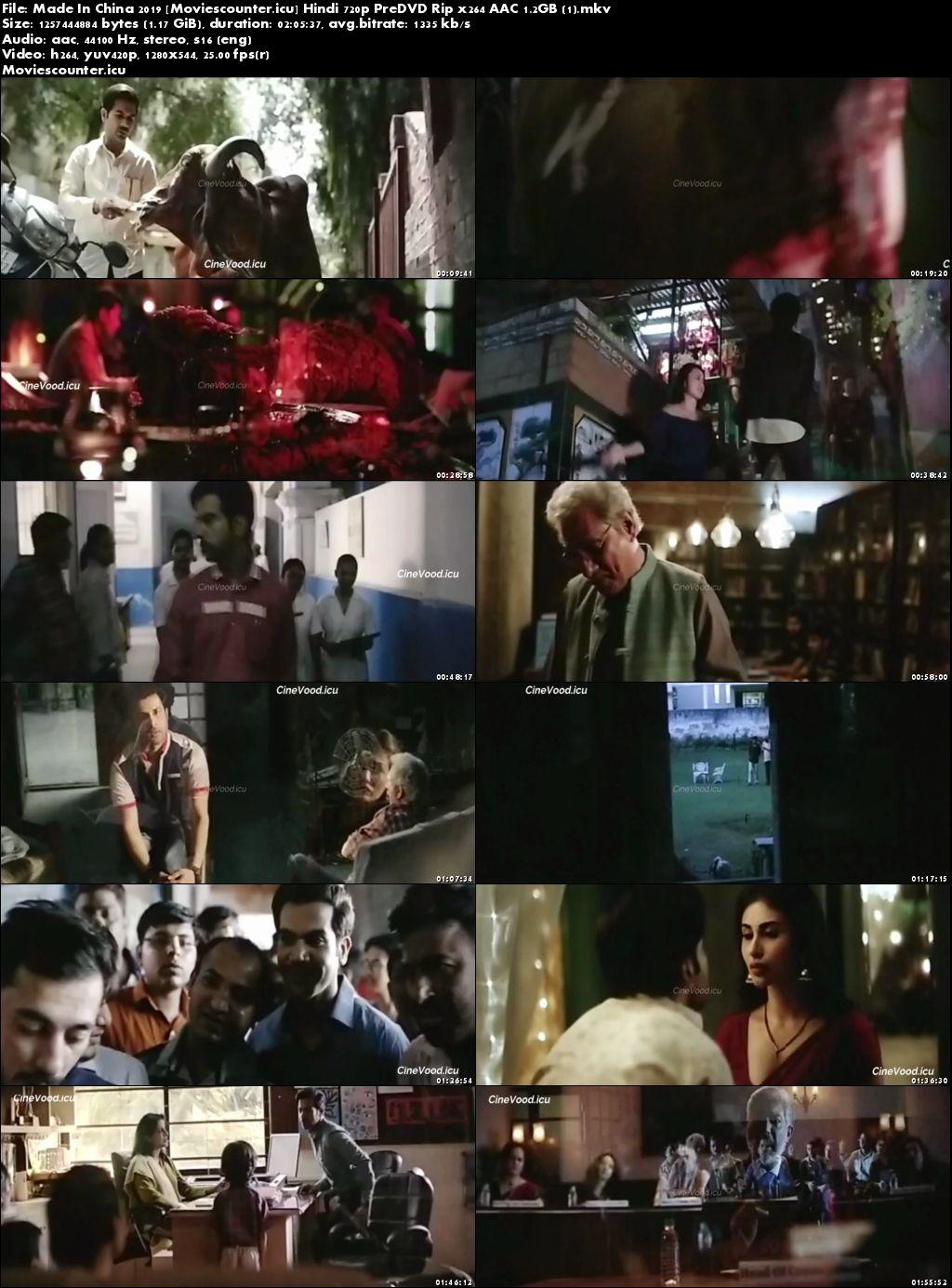 Screen Shots Made in China 2019 Hindi HD 720p