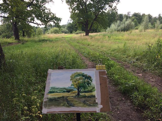 Talanova grove