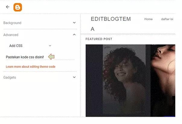 menemukan kolom Add CSS di dasbor Blogger 3