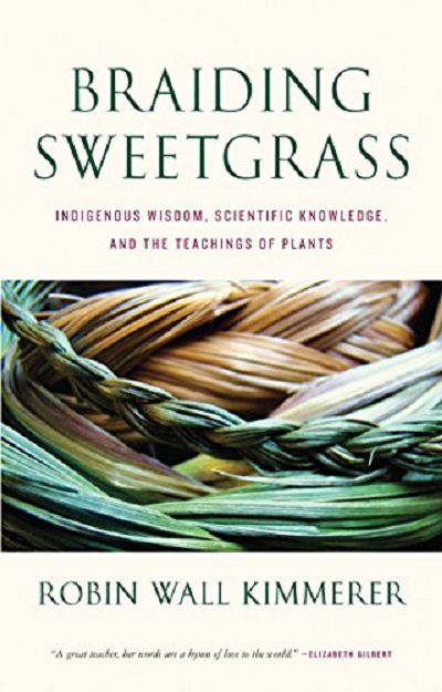 Télécharger Braiding Sweetgrass: Indigenous Wisdom, Scientific Knowledge and the Teachings of Plants pdf