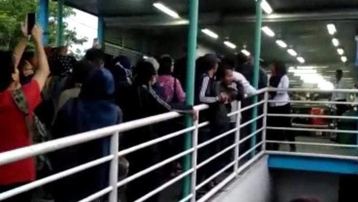 Momen Bus TransJakarta Dibatasi, Penumpang di UKI Cekcok Saling Serobot