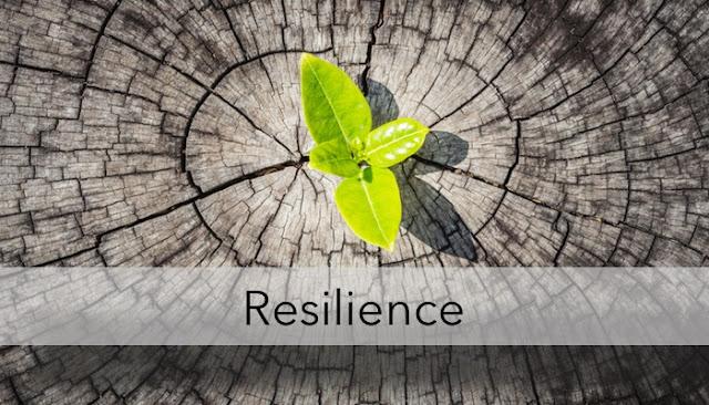 Resiliensi Bukan Sekedar Diksi