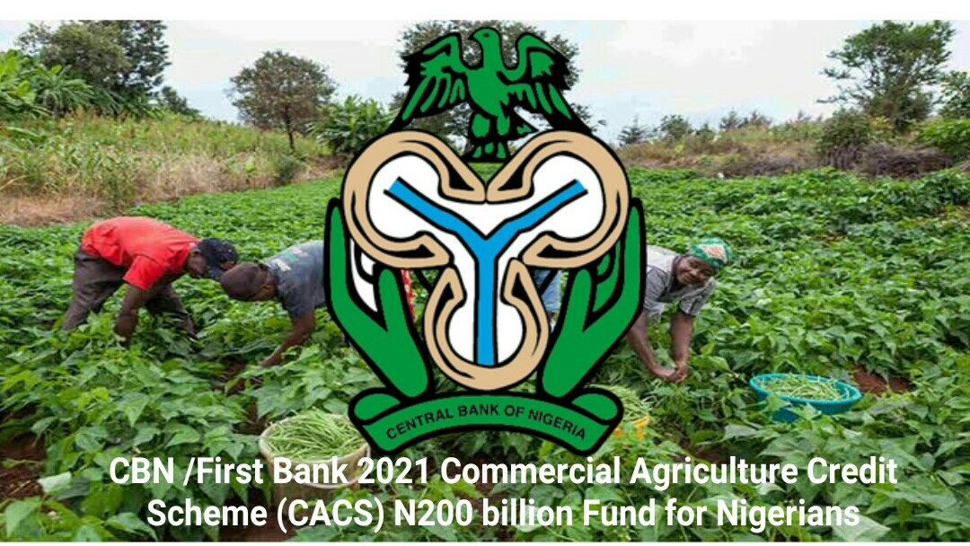 CBN /First Bank 2021 Commercial Agriculture Credit Scheme (CACS) N200 billion Fund for Nigerians