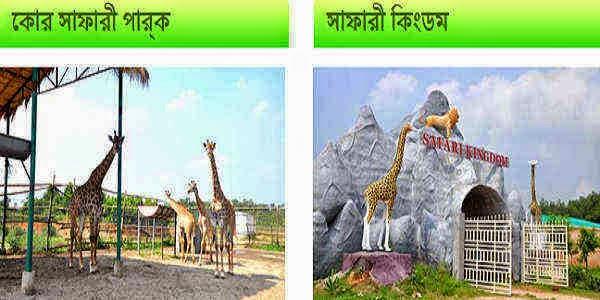 All Fees of Bangabandhu Safari Park in Gazipur