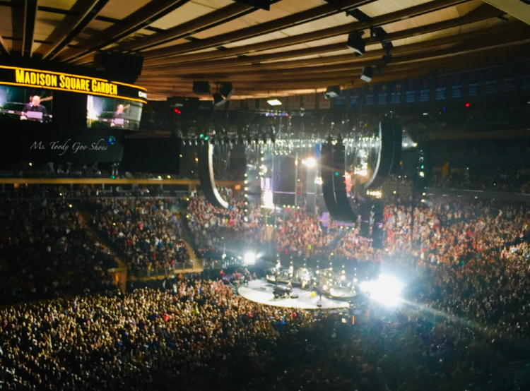Madison Square Garden, New York City | Ms. Toody Goo Shoes