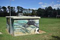 Canberra Street Art | Downer mural by Stylized Impact