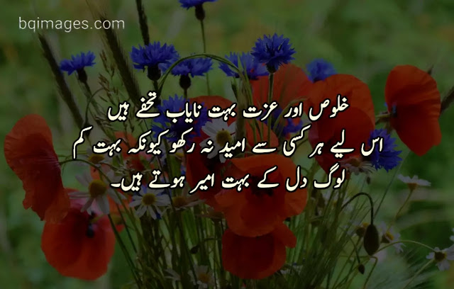 beautiful quotes in urdu with pictures
