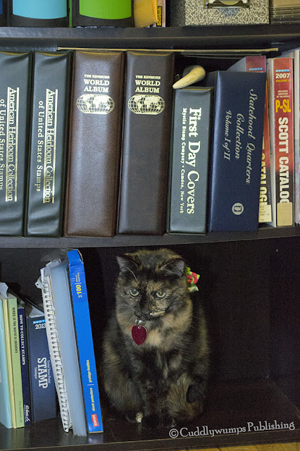 Real Cat Paisley in stamps bookcase_january 2018