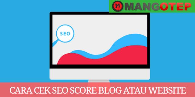 Cara Cek SEO Score Blog atau Website